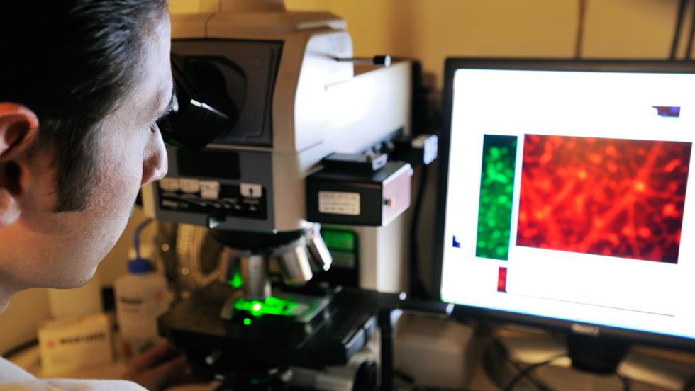 forskare-dator-mikroskop